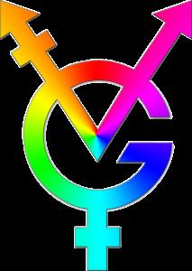 Logo Vereniging Genderdiversiteit